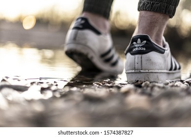 Pavia, Italy - November 9, 2019:  Young man wearing an old pair of Adidas Superstar shoes in a river water - illustrative editorial
