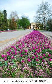 Pavilion Cvijeta Zuzoric in Kalemegdan Belgrade with beautiful tulip field in front