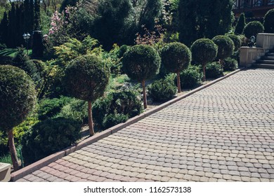 Paving pattern with rectangular shape. Along paved walkways planted flower bed with. In the background, lawn with green grass