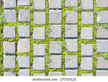 Green Grass Texture Paving Stone Style Stock Photo Edit Now