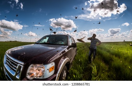 Pavlodar region, Kazakhstan - June 21, 2016: Panoramic view of an offroad car standing in grass as travelers are searching for a way out from fields swarming with gnawing insects, buzzing all around.