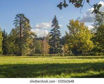 Pavlovsk park in September