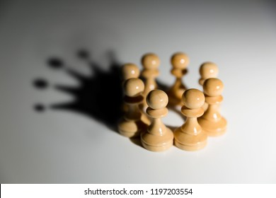 Pawns rounded in circle with a crown in shadow. Teamwork and leadership concept.
