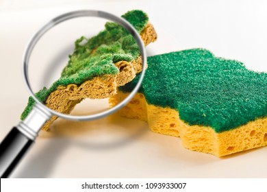Pay attention to the old sponges for household cleaning of kitchen: they can hide dangerous bacteria - Concept image seen through a magnifying glass