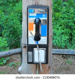Payphone in the Forest