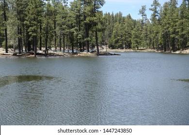 Payson AZ Knoll Lake Mogollon Rim FR300