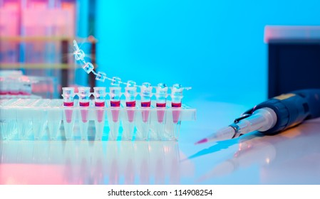 PCR stripe for DNA amplification and automatic pipette