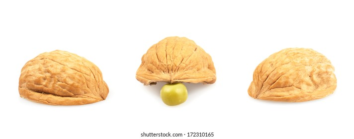 Pea under one of three walnut shells isolated over white background