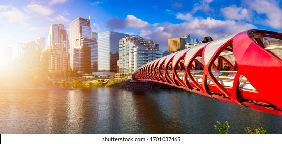 Peace Bridge across Bow River with Modern City Buildings in Background during a vibrant summer sunrise. Taken in Calgary, Alberta, Canada.