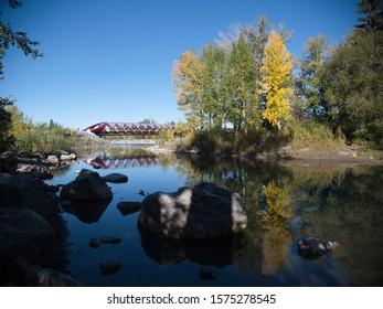 Peace Bridge Calgary Morinig View