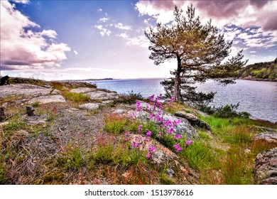 Peace and grandeur. Larvik, Norway.Walk along the seashore and see the beauty.