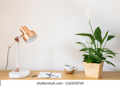 Peace lily house plant with coffee and notepad, pen and copper lamp