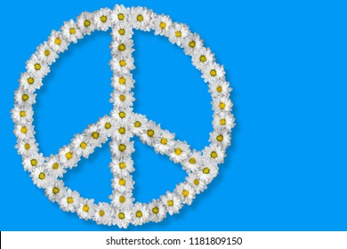 Peace symbol made of white dasies, isolated on blue.