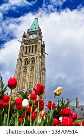 Peace Tower of Parliament building at Ottawa, Canada with tulip flowers as foreground. This picture is taken during Ottawa Tulip Festival 2013.