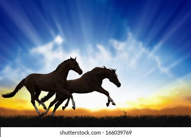 Peaceful background - two running horses, beautiful sunset, picture for chinese year of horse 2014