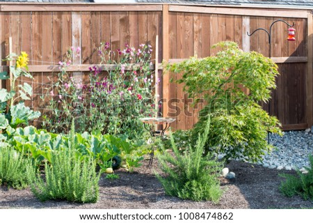 Peaceful Backyard Gardening