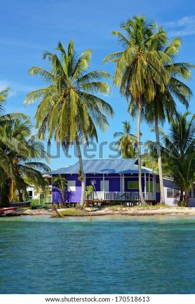 Peaceful beach house under coconut trees, Caribbean sea