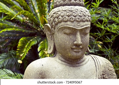 Peaceful Buddha stone statue with nature on back