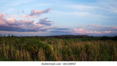 A peaceful calm sunset over Florida Everglades sawgrass prairies