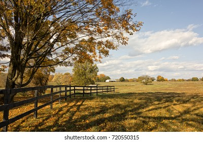 A peaceful farm scene with Autumn leaves, wood fence and field with a beautiful sky with white clouds.