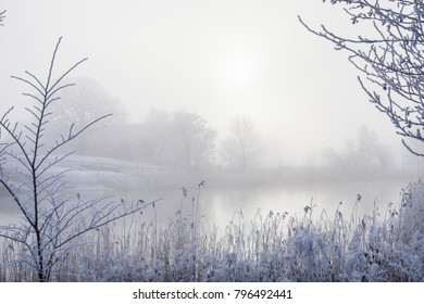A peaceful, foggy winter scene by a lake.