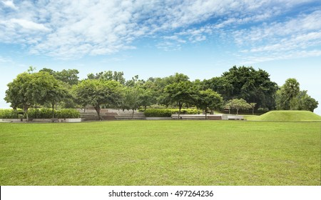 Peaceful Garden with empty field under blue sky