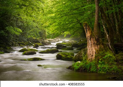 Peaceful Great Smoky Mountains National Park foggy Tremont River relaxing nature landscape scenic near Gatlinburg TN