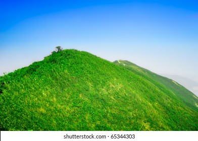 Peaceful green mountains covered of grass and trees under the clear blue sky.