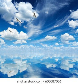 Peaceful heavenly background - blue sea and sky, white clouds, sunny weather, three seagulls flying over sea.