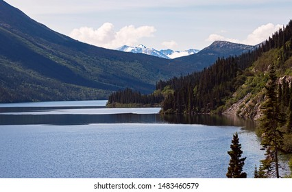 a peaceful inlet of glacier bay near Skagway in alaska surrounded by forested cliffs and snowy mountains