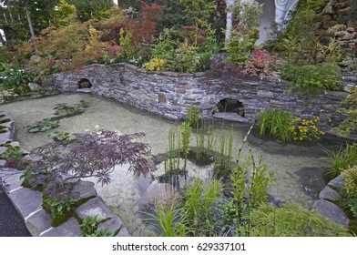A Peaceful Japanese Water Garden With Acers