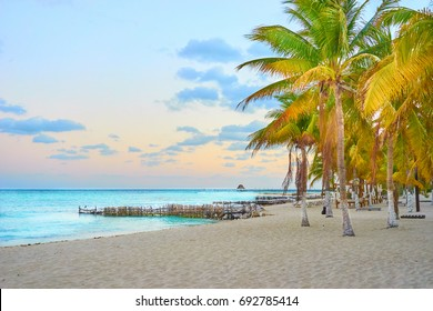 Peaceful North Beach with palm trees / Isla Mujeres Beach Mexico / Summer Vacation in Mexico