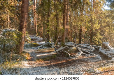 peaceful place in the middle of a forest in Camusaee Flims Switzerland