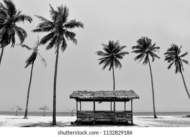 Peaceful scenery of coconut tree and bamboo hut on the ground in Kampung Mangkok, Setiu, Terengganu, Malaysia. black and white photography.