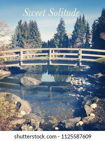 Peaceful springtime landscape with wood bridge over calm pond outlined with rocks. Tall evergreen trees reflecting on water with blue sky white cloud background. Sweet solitude words in white font.