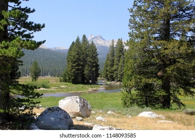 Peaceful stream meandering through a high altitude meadow in Yosemite National Park