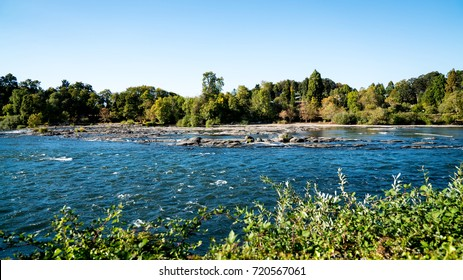 A peaceful stretch of the Willamette river running through Eugene and Springfield, Oregon.  Green vegetation along the riverbanks with a blue sky on a sunny early fall day.