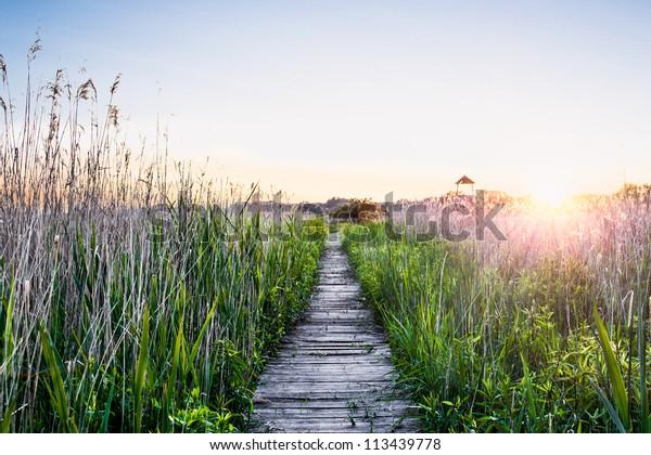 Ruhiger Sonnenuntergang mit Holzsteg