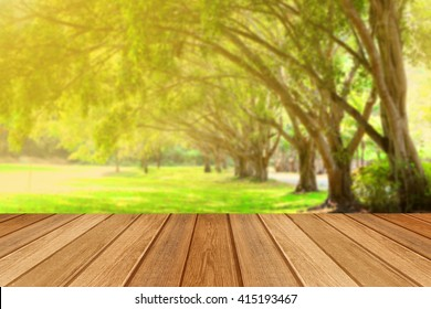 Peaceful tree line in the park with wooden floor.Blur
