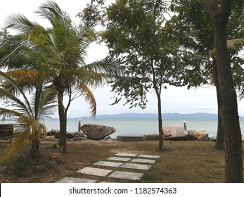 A peaceful view of the beachfront Oceanview green grass few palm trees big rock for sitting and enjoys the sea breezes watching the sea and the island on the other side.
