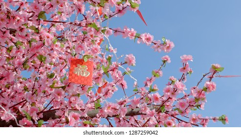 Peach blossom with red packet words means luck