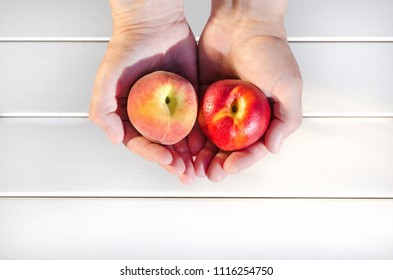 Peach and nectarine in female hands on white background. Difference between peaches and nectarines