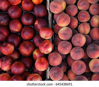 Peaches and nectarines on the counter for sale in a grocery shop.