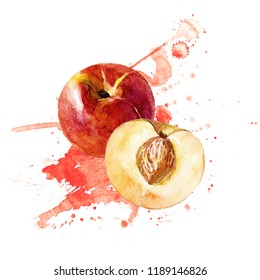 Peaches whole and cut, watercolor illustration. - Shutterstock ID 1189146826