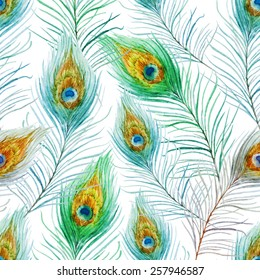 peacock feather, pattern, watercolor, background, wallpaper