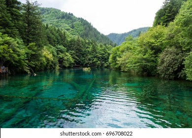 Peacock lake, one of the largest lake in Jiuzhaigou national park. Shape of lake, when view from above, will look like a peacock.