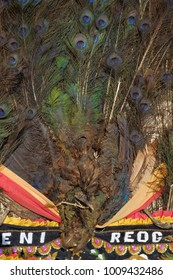 Peacock tail feathers as an ornament on Reog Ponorogo mask.