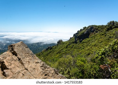 The peak of Mt Tamalpais State Park, Marin County, California. San Francisco bay area visible in the background. The result of uplift, buckling, and folding of the North American Plate.