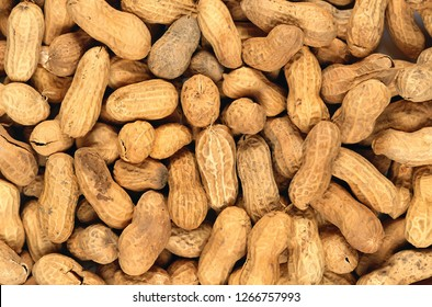Peanut in a shell texture. food background of peanuts. Peanuts in the peel.