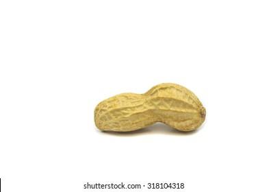 peanut single against white background